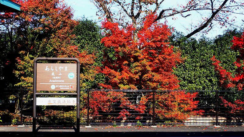 嵐山是京都秋日的化身
