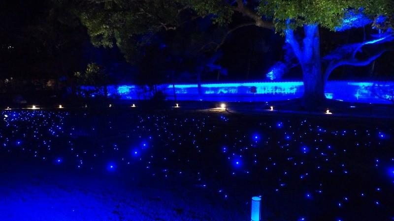 夜間點燈的活動