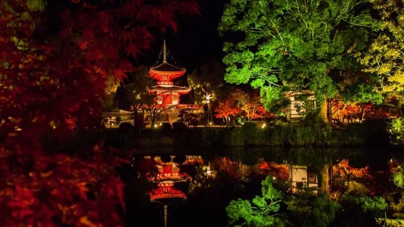 大覺寺的夜間拝観
