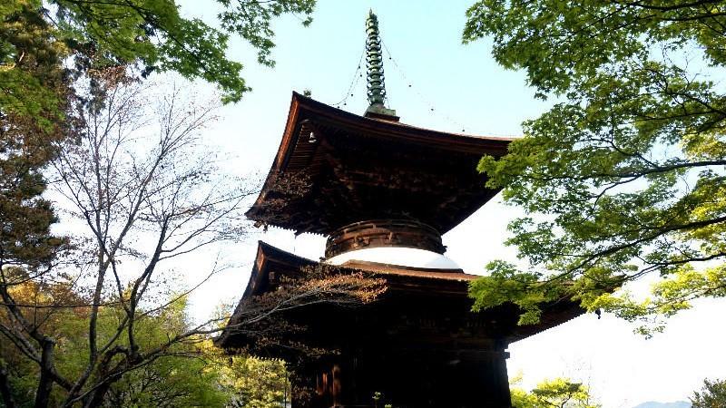 Tahoto Pagoda of Jojakko-ji Temple
