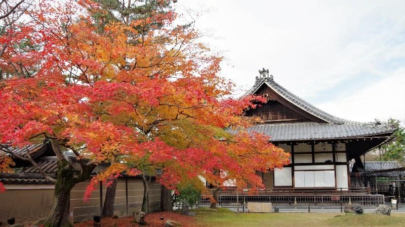 Kodai-ji Temple 5