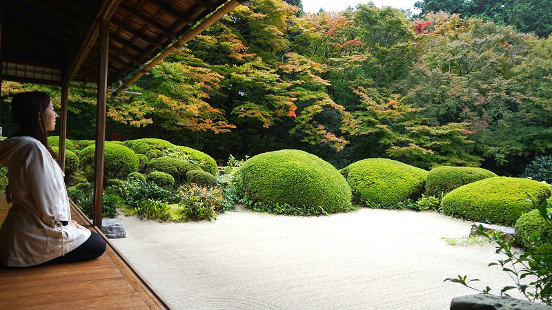 "In the garden you can hear the sound of a ""shishi-odoshi"""