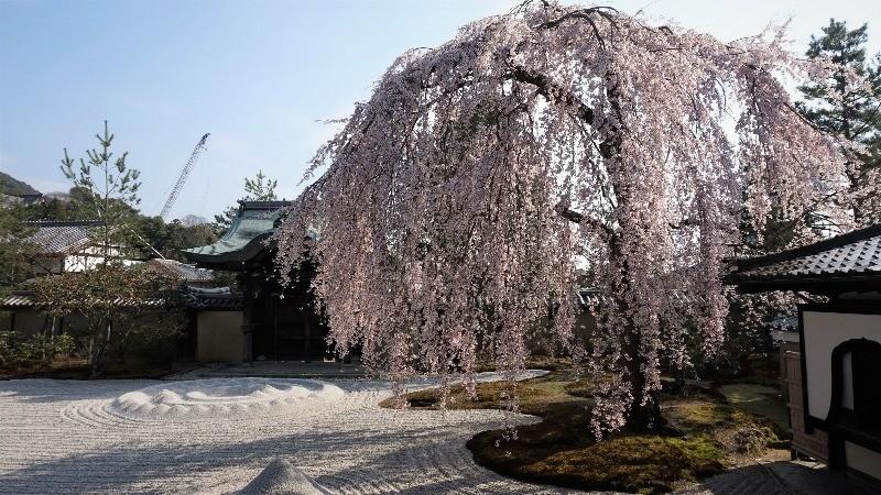 日式庭園的和風之美