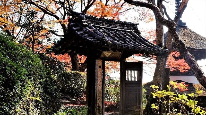 Yoshimine-dera Temple 2