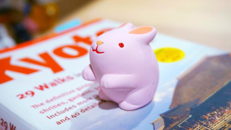 fortune slip-bunny