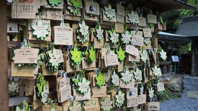 綠色楓葉的造型
