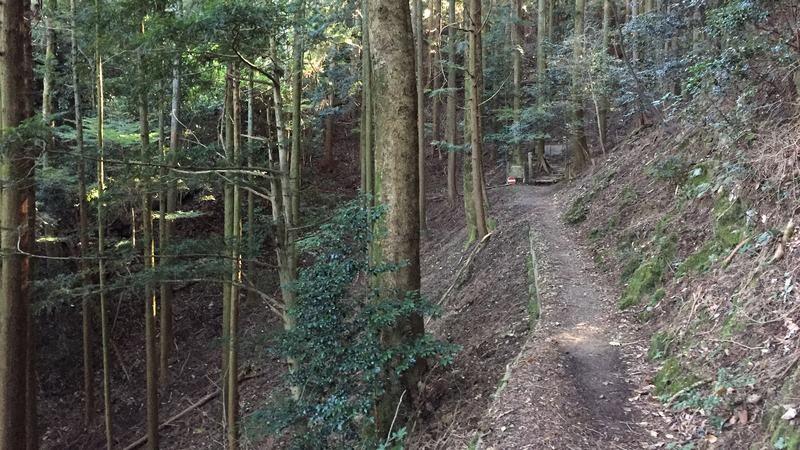 走到這裡路變得非常狹窄