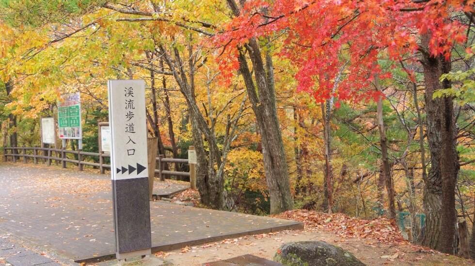 るり溪自然公園・溪流步道
