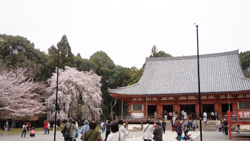 the vermilion Kondo main hall