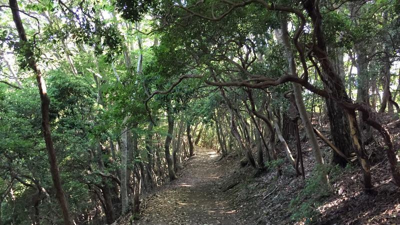 Sugiraku 村