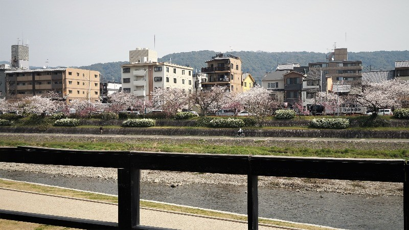 アモーレ(Amore)木屋町
