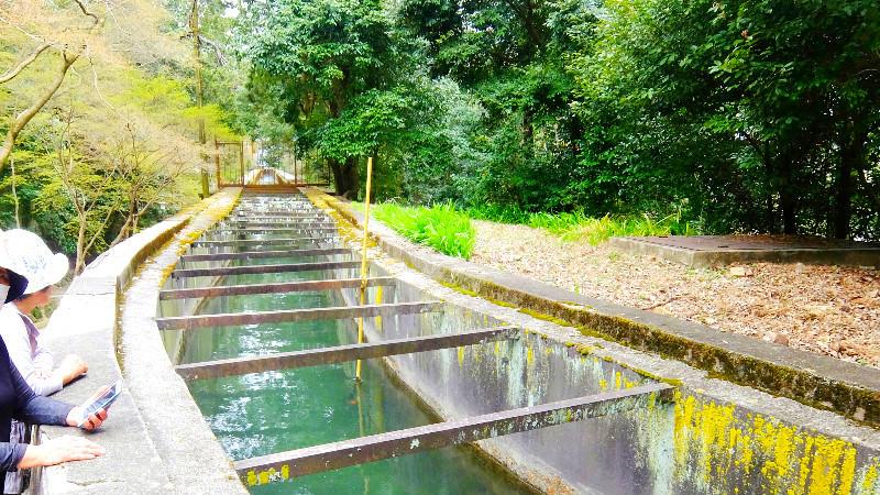 水道橋所設計