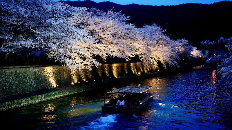 岡崎十石舟船遊和夜間燈照