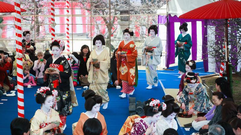 梅花祭與野宴茶道
