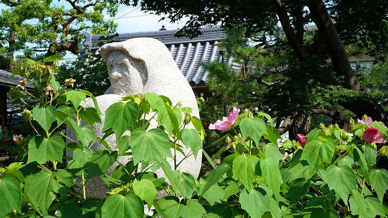 daruma hidden in the garden