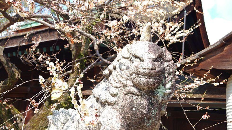 guardian lion-dog
