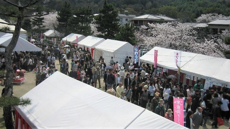 Ujigawa River Cherry Blossom Festival