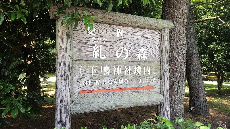 4:00 p.m. The Forest of Atonement and Shimogamo Shrine