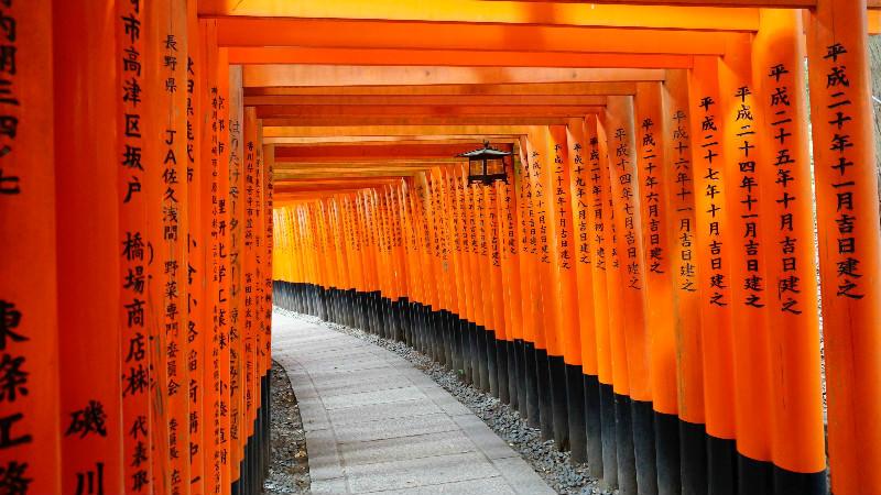 9:30 a.m. To Fushimi Inari Shrine!